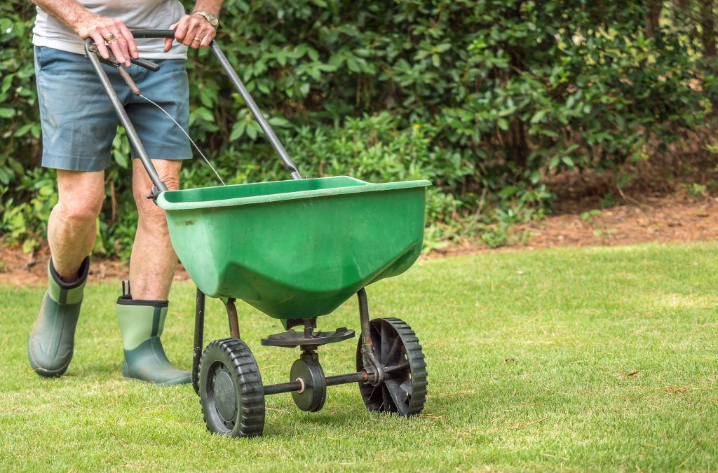 Man seeding a lawn with a broadcast spreader